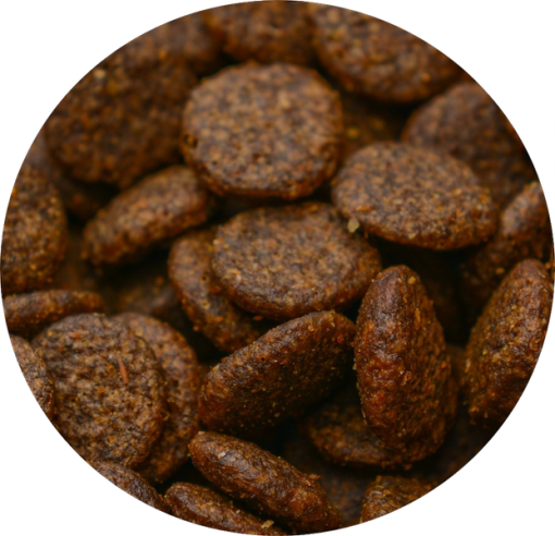 Try our new grain free venison dog food with 50% venison and salmon, a great quality choice for your dog and at a great price.