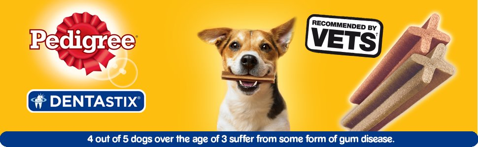 DentaStix Banner