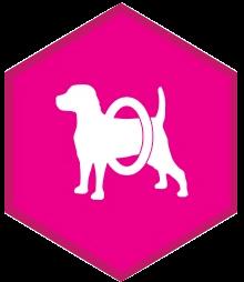 eukanuba defend dog food