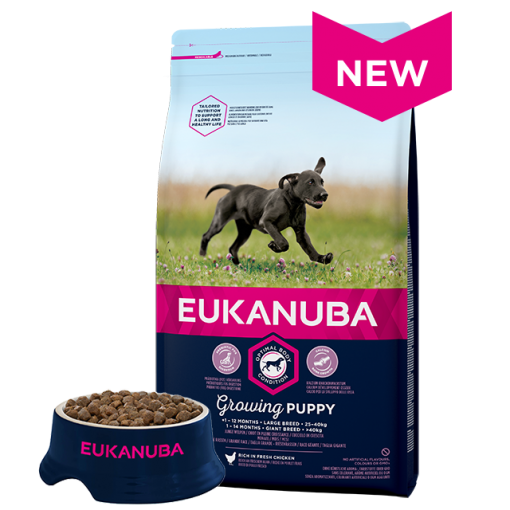 Eukanuba Puppy Large Breed Chicken Bag Shot Front - Dog Food