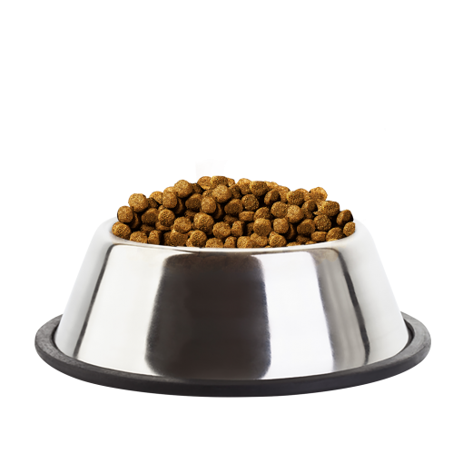 Eukanuba Puppy Large Breed Chicken Kibble Bowl - Dog Food