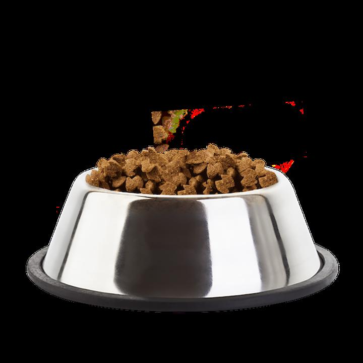 Eukanuba Mature Senior Medium Breed Chicken Kibble Bowl - Dog Food