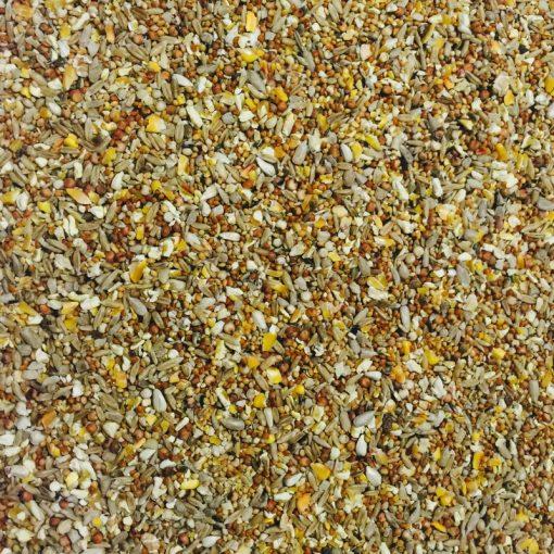bucktons premium mess free wild bird food seed shot - seed mix/blend for wild garden birds
