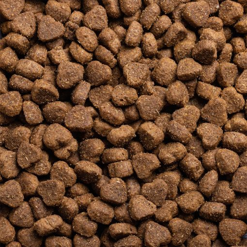 High-quality puppy junior food with chicken, with high protein for working dogs chosen by us for its great value kibble shot