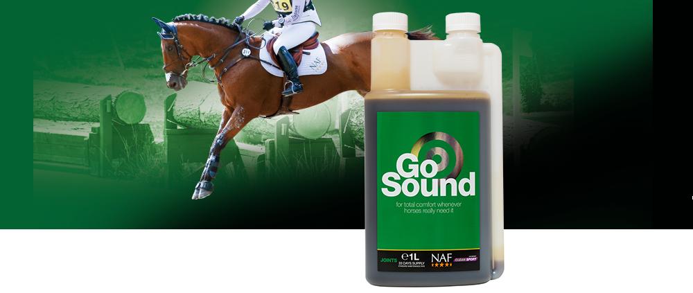 NAF Go Sound banner
